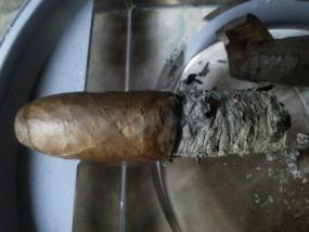 Pinar Del Rio Habano Sun Grown Torpedo